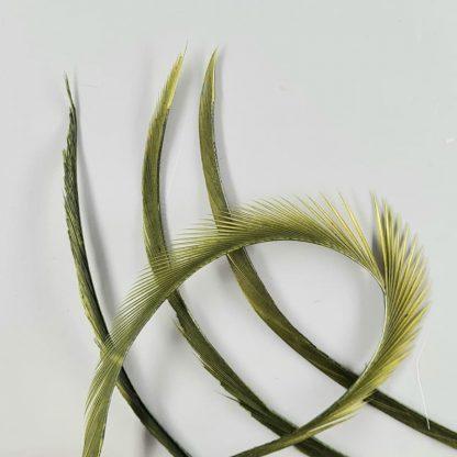 Goose Biots oliv
