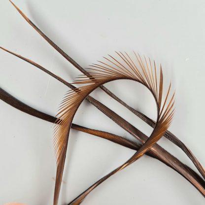 Goose Biots braun